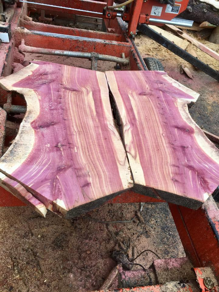 Book matched Sycamore.