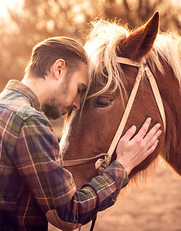 Young man hugs a horse. Autumn outdoors