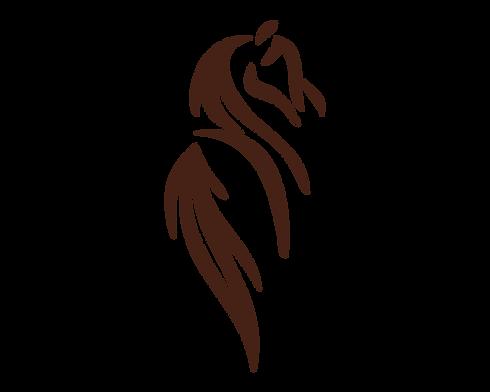 Logo NiNA S_