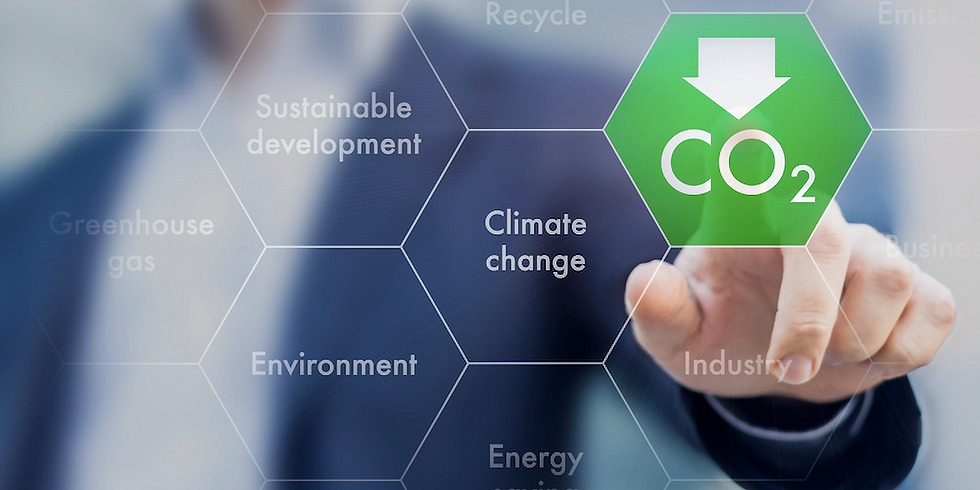 Technology Investment Roadmap: Carbon Capture and Use as an emerging technology