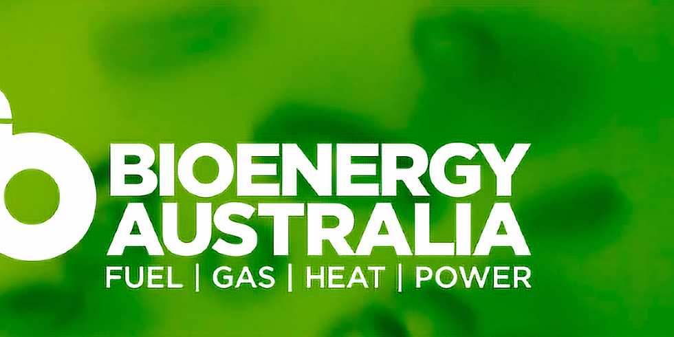 The role of bioenergy in supporting a renewables dominated electricity grid
