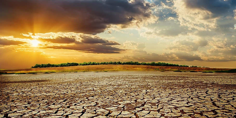 Addressing climate change beyond the COVID 19 pandemic