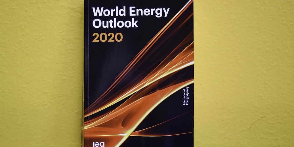 ANU Energy Update 2020
