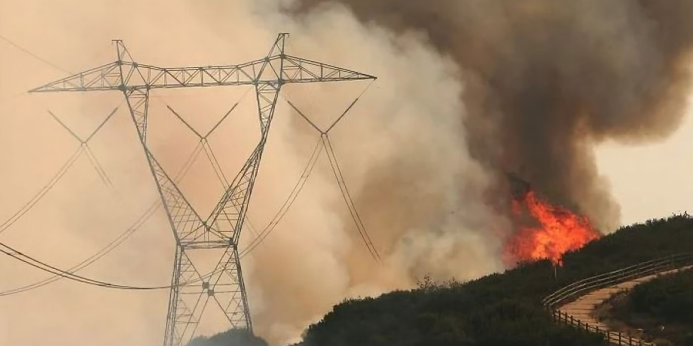 Preparing electricity networks for extreme climate events: Learnings from California and Texas