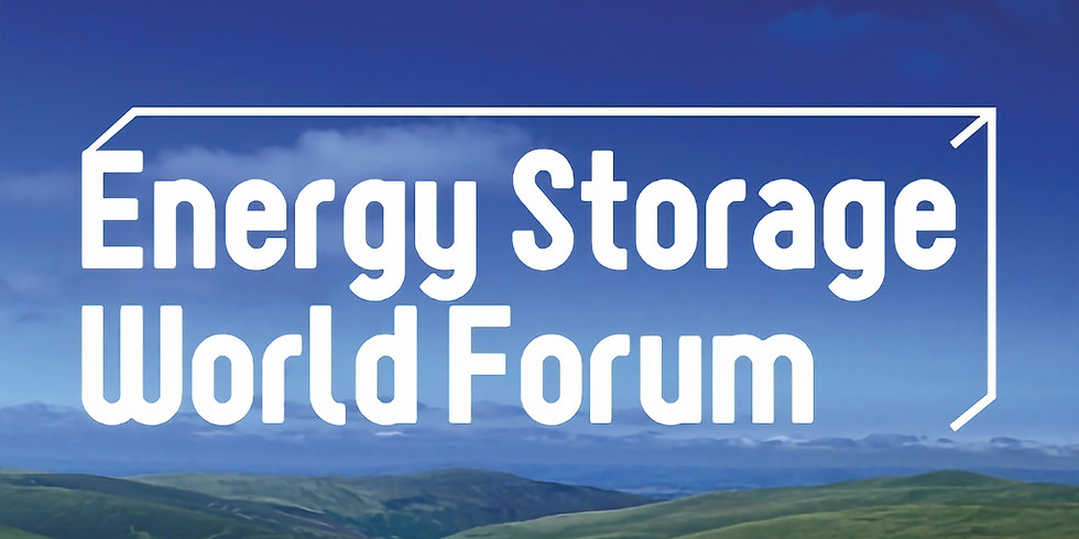 Energy Storage World Forum Pre-Event Webinar: Decarbonising Industrial Sectors With The Help Of Large Scale Hydrogen Pro