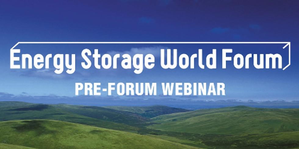 Energy Storage World Forum Pre-Event Webinar: Easing The Integration Of DER Into The National Energy Market