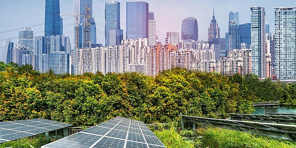 The Global Race to Net Zero: Commercial Real Estate Strategies