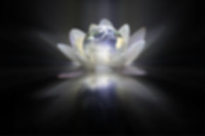 The earth imerging from a lotus flower