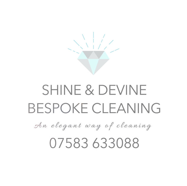 Shine & Devine   Logo Animation