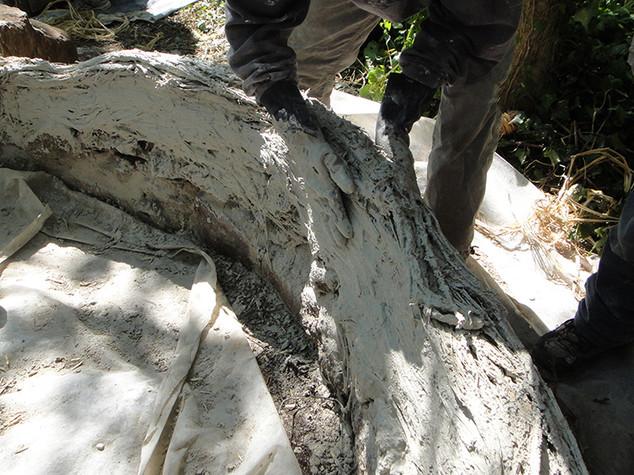 Pose des boudins (fibres de chanvre mélangées avec de la chaux).
