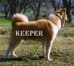 KEEPER_82-379x277_edited.jpg