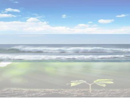 11/04 - Ter land, ter zee en in de lucht