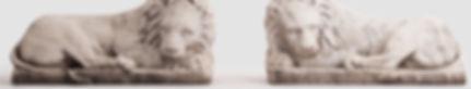 Polstjernan-Lejon.jpg