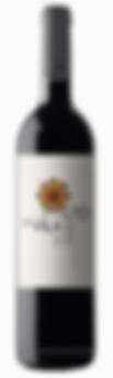 Vinho Tinto Douro Alto da Vila