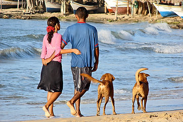 beachside-stroll-1312591-1598x1062.jpg