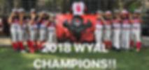WYAL 8u Champs.jpg