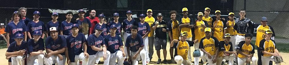Cage Warriors Wolverines 14u teams pic_e
