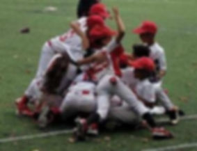 angels 10u celebrate pic_edited.jpg