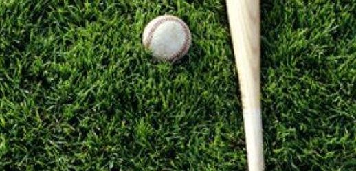 alg-baseball-grass-jpg.jpg 2014-2-28-17: