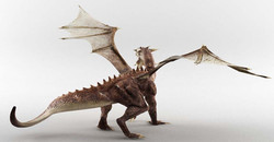 dragon05