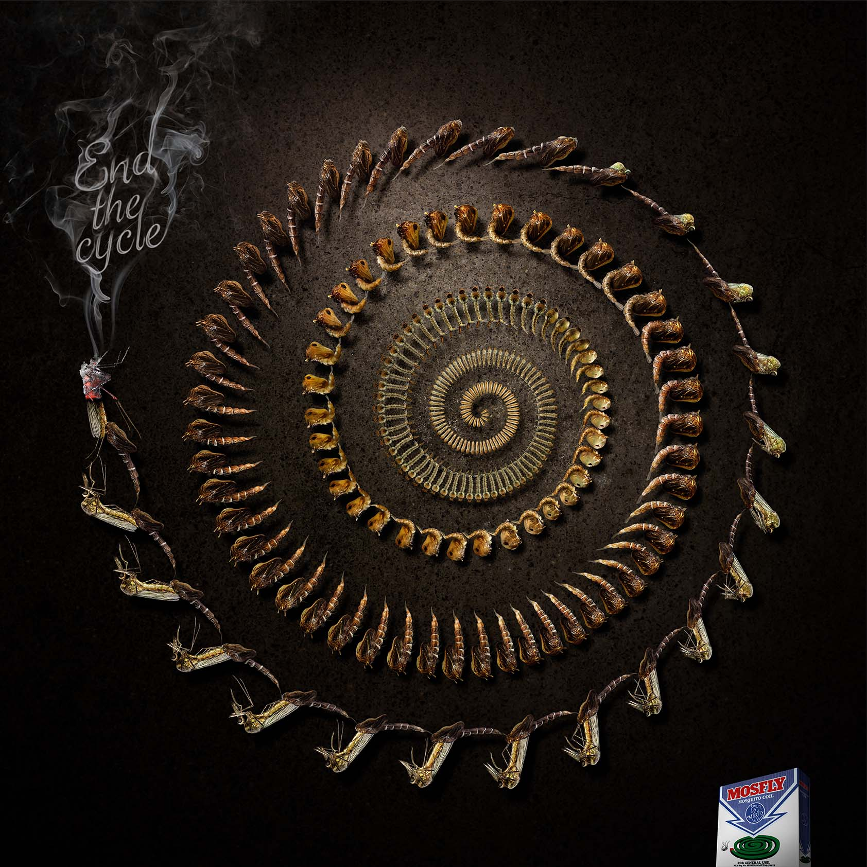 MOSQUITO COIL_s