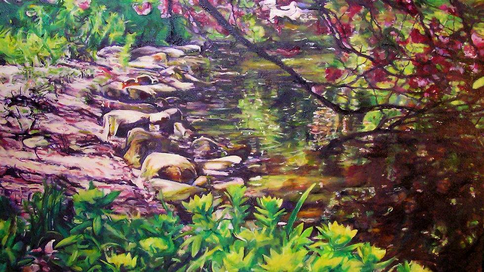 David Vigon - Spring Lake