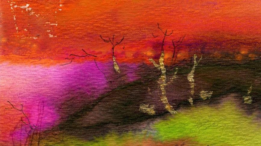 Chandini Pinilla Color 015