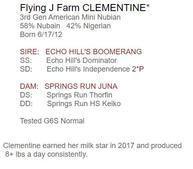 FLying j farm Clementine mini nubian doe