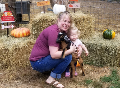 Baby goat play date and snuggle update