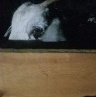 I see you MOM!