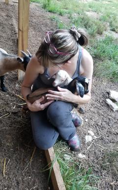 baby goat yoga charlotte nc.jpg