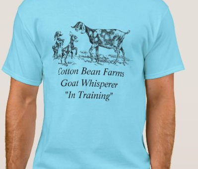 What do you think of our T-Shirts? $20 each