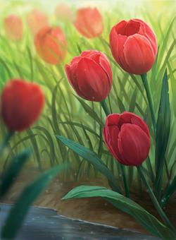Tulip_Final
