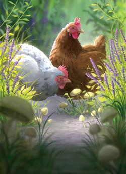 Chicken_Final