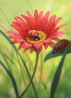 Ladybug_Final