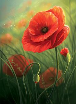 Poppy_Final