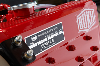 BUKH branded engine.png