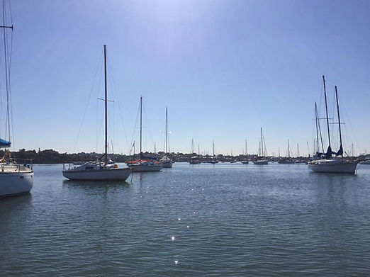 daytime on the bay.jpg