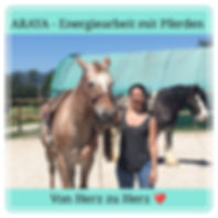 Energiearbeit mit Pferden.jpg