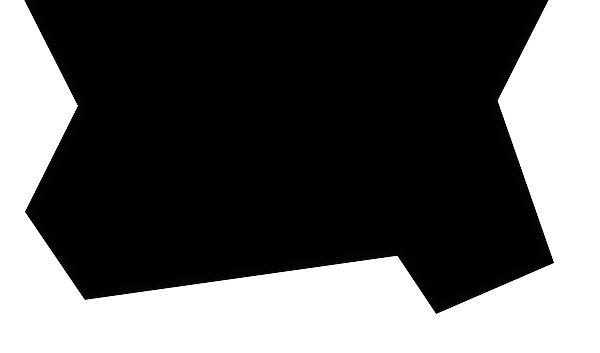 CWIP---WEB-BANNERWHITE.png