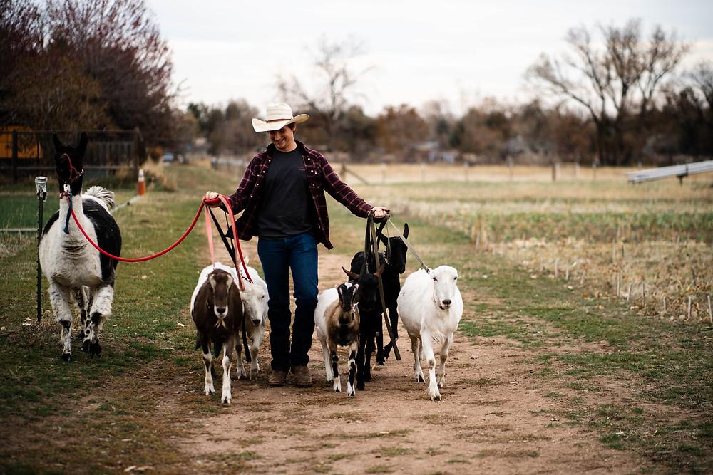 Boulder-Goat-Farm