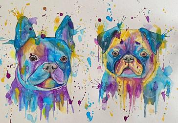 Französische Bulldoge & Mops