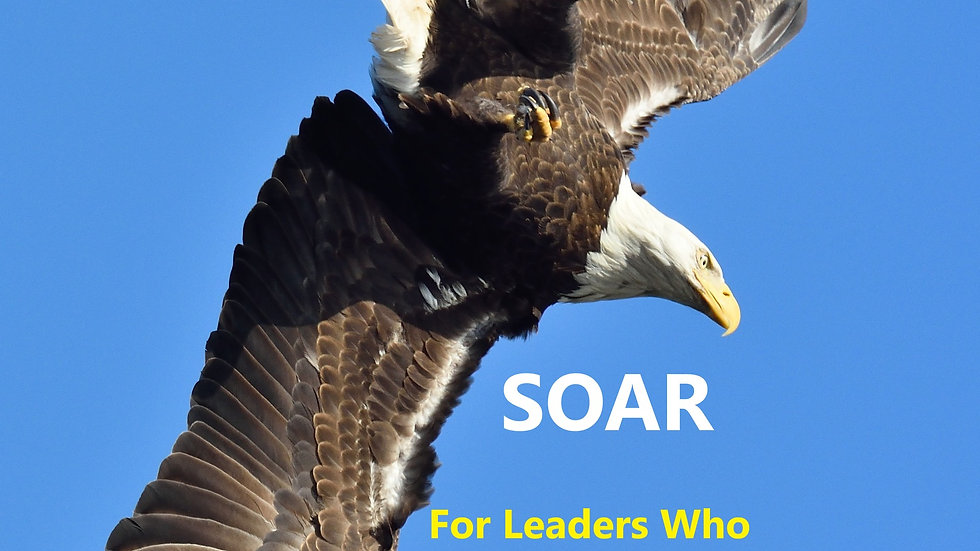 SOAR - For Leaders Who Want to Fly