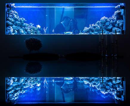 Casal se beijando atrás de aquário