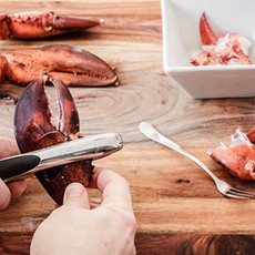 EVERYTHING LOBSTER