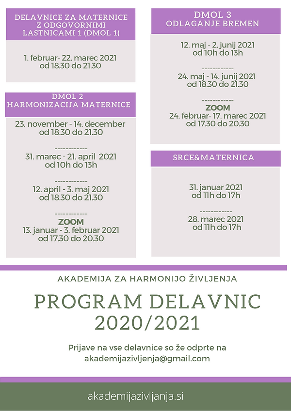 Program delavnic 20_21.png