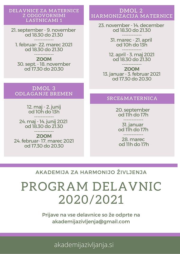 Program delavnic 20-21.png