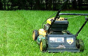 ask-julie-what-proper-mowing-height-gras