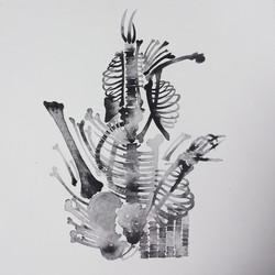 huesos 2