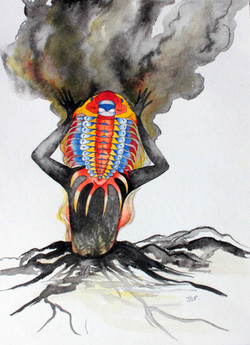 Dios trilobite del volcan